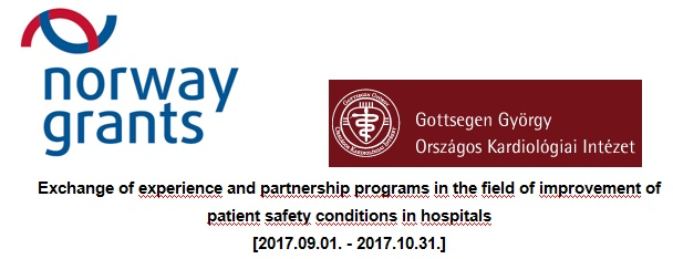 Exchange of experience and partnership programs in the field of improvement of patient safety conditions in hospitals